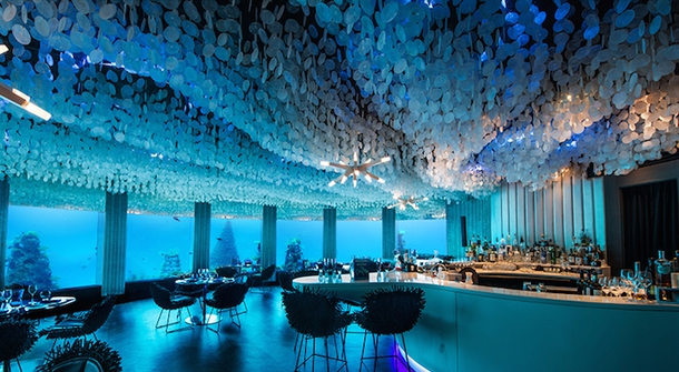 Dining underwater while admiring ocean life around you? Yes, please!