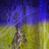 03-studio-droog-museum-of-sex