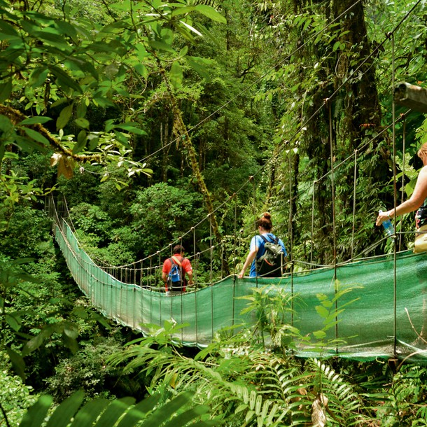 In 1970, Costa Rica decided to protect almost 25% of its territory by turning it into National Parks, taking the American system as its reference point. The objective was to preserve the natural richness of the country, without thinking that, a few years later, these areas would become huge tourist magnets.