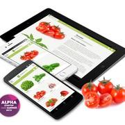 web-summit-horticool-app-multiscreen-ws15