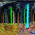 Psychedelic rainbow trees with a help of 3D laser scanner