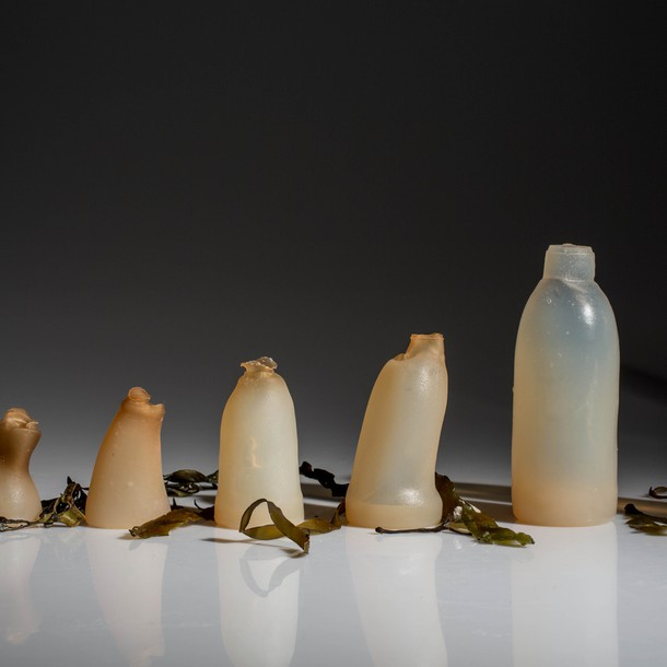 algae-water-bottle-by-ari-jonsson-designmarch_dezeen_ban