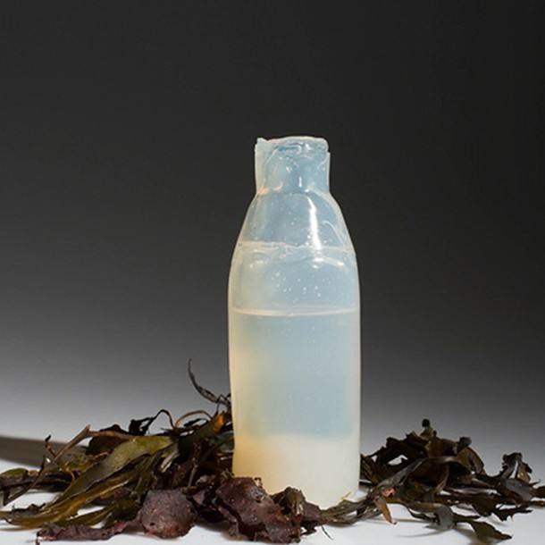 Algae to the rescue: biodegradable water bottles by Ari ...