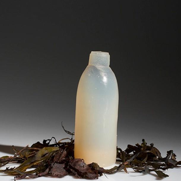 biodegradable-algae-water-bottle-ari-jonsson-4