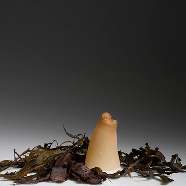 biodegradable-algae-water-bottle-ari-jonsson-7