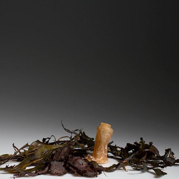 biodegradable-algae-water-bottle-ari-jonsson-8