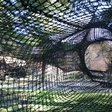 The spiral tube lets you climb through the trees