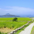 South Korea joins the race for the world's first carbon-free island