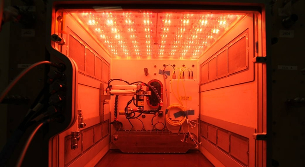 Farming in space with NASA's Advanced Plant Habitat