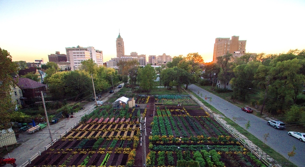 America's First Sustainable Urban Agrihood