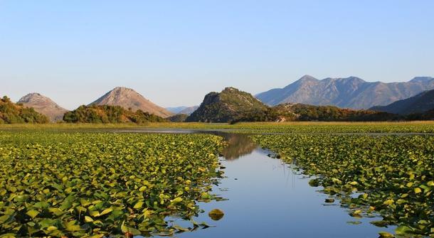 Save Skadar Lake, one of Europe's last true wildernesses, from devastating construction