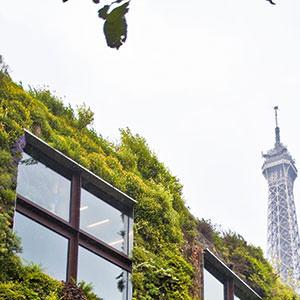 vertical gardens - Patrik Blanc