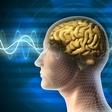 Brainwaves Instead of Passwords?