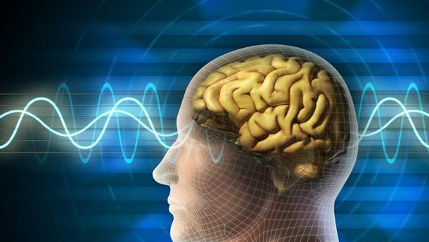 Možganski valovi bi lahko pripomogli k preprostejši varnosti v strogo varovanih okoljih.
