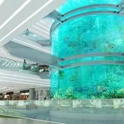 amphibianarc-akvarij