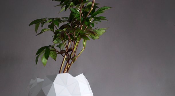 Plant pot that grows and develops together with the plant