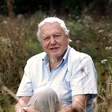 Sir David Attenborough campaigning for cheaper fossil fuels
