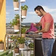 Urban Planty: bring nature to your home