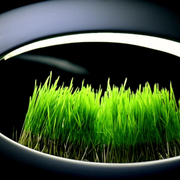 grasslamp-lampe-bureau-design-fait-pousser-vegetation
