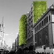 Arup's Vision of the Spanish Capital: Painting Madrid Green
