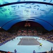 tenis_akvarij