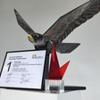 The winner of euRobotics Technology Transfer Award is Robirds