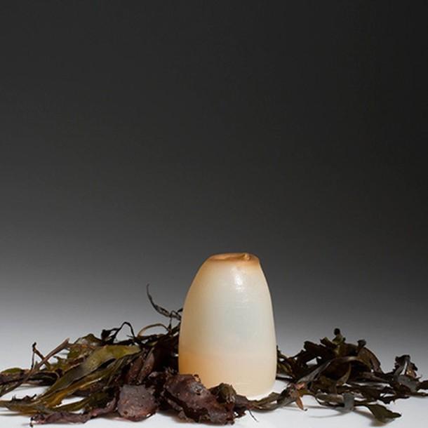 biodegradable-algae-water-bottle-ari-jonsson-6