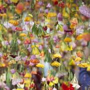garten-hanging-flowers-1020x610