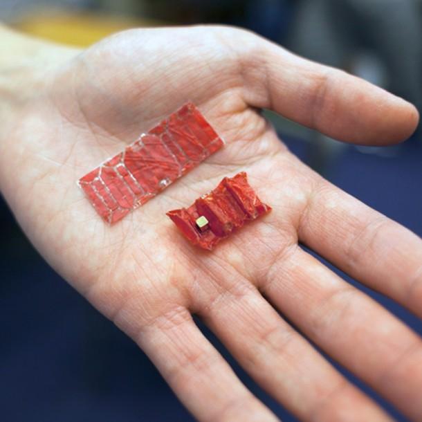mit-microsurgeon-2_BYiBbla