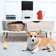 petcube-bites_dog_interior-2