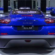 glm-g4-6