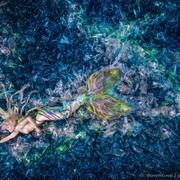 vonwong_plasticmermaid-3_plastic_ocean-1024x683