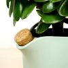 c12-detail-natural-balance-flowerpot