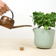 A perfect solution for when you're on vacation: a self-watering flowerpot by Studio Lorier