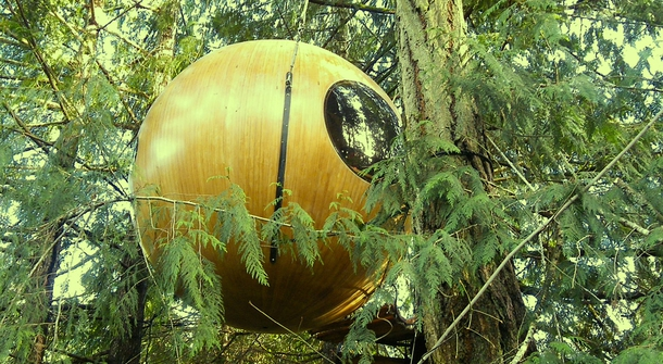 Waking up in the trees: spherical treehouses for the free spirit within you