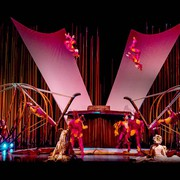 varekai-act-russian-swing