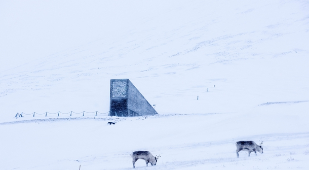 Preserving life: Svalbard Seed Vault